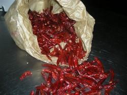 Agriturismo Nonna Cecilia:peperoncini