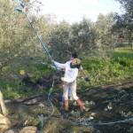 Agriturismo_nonna_cecilia (7)