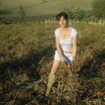 Agriturismo Nonna Cecilia: i nostri pomodori